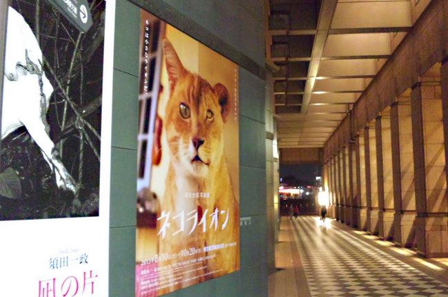 Iwagou01.jpg
