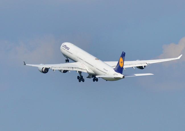 Lufthansa06.jpg
