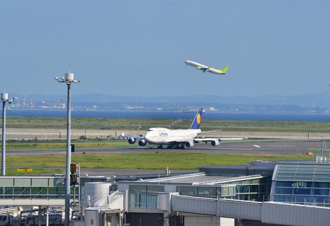 Lufthansa11.jpg