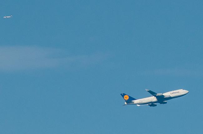 Lufthansa17.jpg