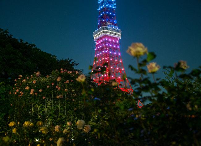 TokyoTower03.jpg